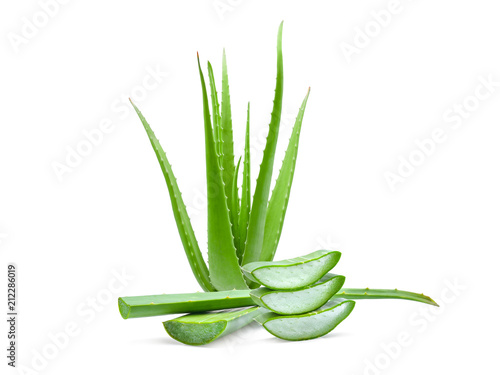 Recess Fitting Condiments clump of green aloe vera plant isolated on white background