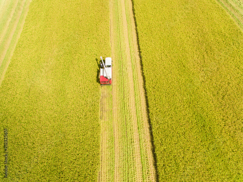 Foto op Aluminium Luchtfoto aerial view of Combine harvester machine with rice farm