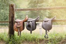 Horse Saddles In A Wooden Fence