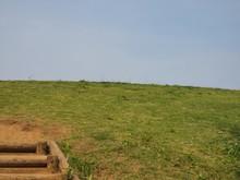 Wooden Steps Hill