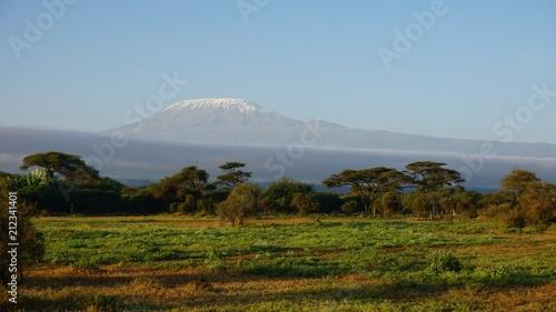 In de dag Afrika kilimanjaro and kenyan landscape