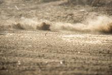 Dirt Fly After Motocross Roari...