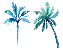 Palm Trees. Watercolor Illustration