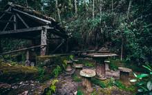 Abandoned Dark Location In Jun...