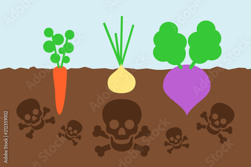 Pinturas sobre lienzo  Dangerous cultivation on the polluted field - crop of vegetable is contaminated by poisonous chemicals in the soil