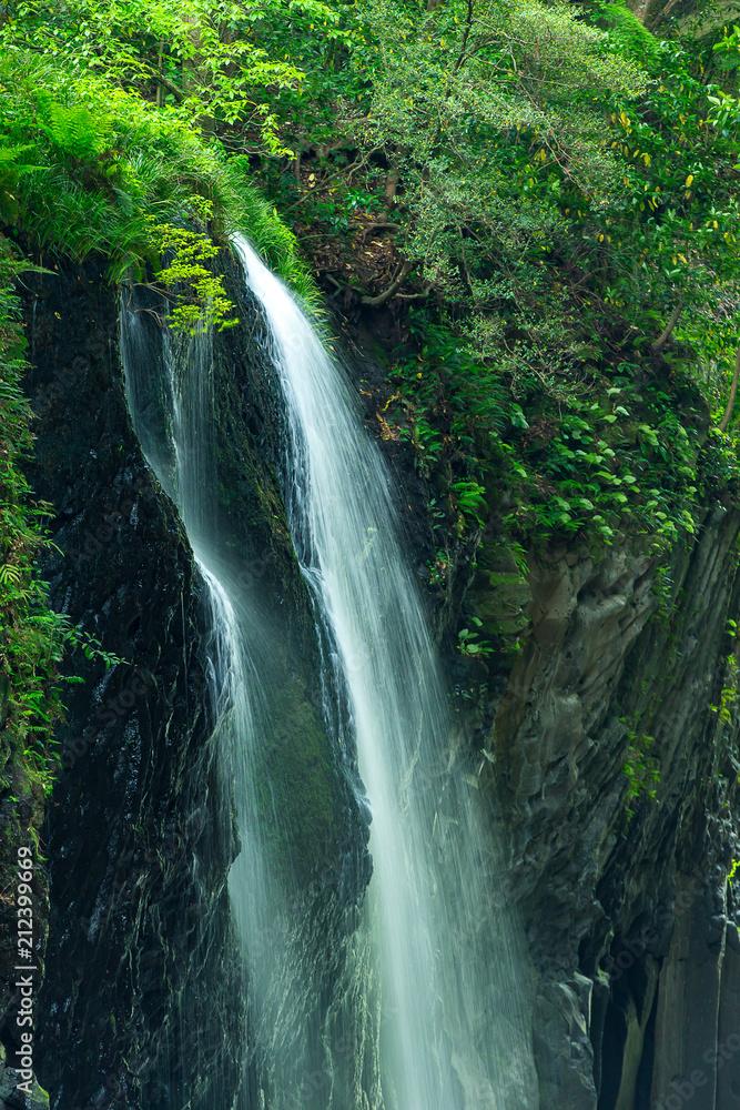 新緑の真名井の滝(宮崎県、高千穂、滝上部)