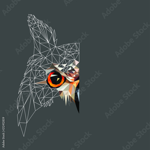 фотография Low poly triangular and wireframe owl face on dark background, symmetrical vector illustration EPS 10 isolated