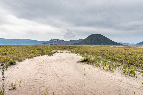 Keuken foto achterwand Donkergrijs path through grassland under cloudy sky with mountain as background