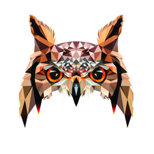 Low Poly Triangular Owl Face O...