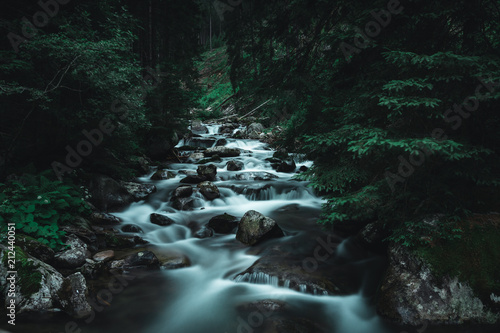 Aluminium Prints Forest river River in the mountains