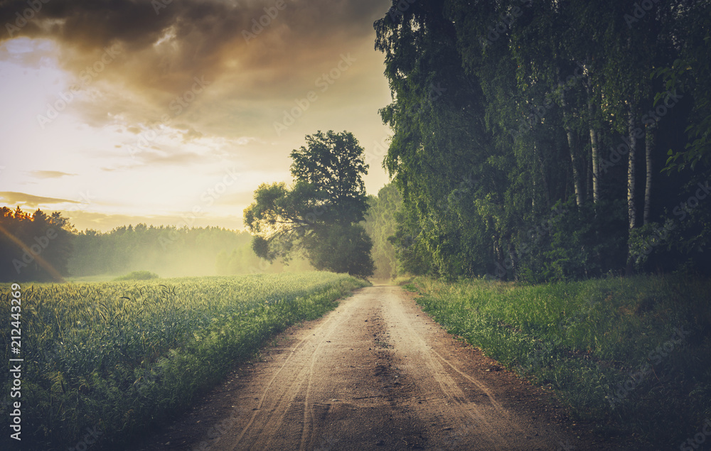 Fototapeta Scenic Empty Forestl Road at Misty Sunset
