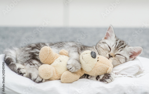 Obraz na plátne Cute baby kitten sleeping with toy bear