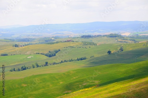 Foto op Plexiglas Blauwe hemel Beautiful landscape of hills, cypress trees and houses in Tuscany, Italy