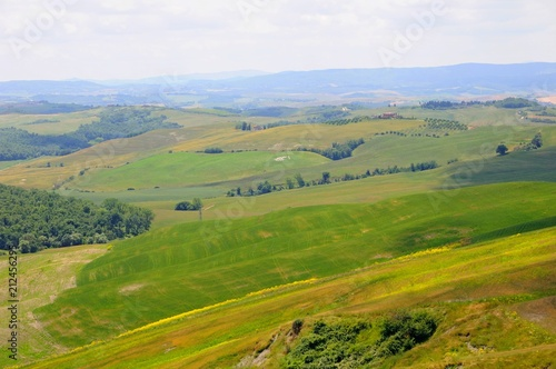 Beautiful landscape of hills, cypress trees and houses in Tuscany, Italy