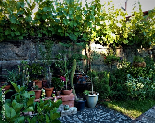 Hinterhof Garten Buy This Stock Photo And Explore Similar