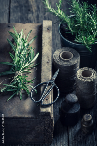 Poster Aromatische Green and fresh herbs on a wooden rustic box