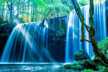 新緑の鍋ヶ滝(熊本県阿蘇郡)