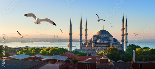 Photo  Mosque and Bosphorus in Istanbul