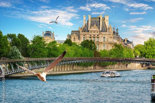 Seagulls over Seine Wallpaper Mural