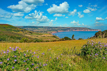 Robin Hoods Bay In The North Y...