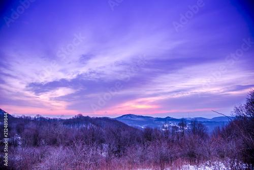 Poster Prune Winter sunrise