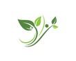 Logos of green leaf ecology nature element