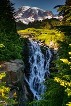 Myrtle Falls On Edith Creek, W...