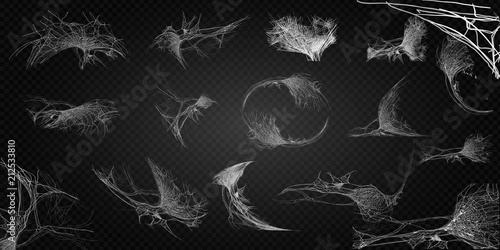 Fototapeta Collection of Cobweb, isolated on black, transparent background