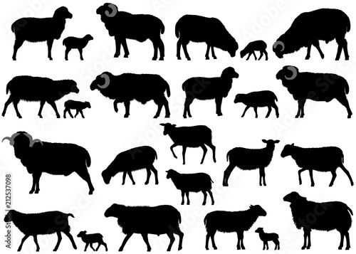 Fotomural Collection of silhouettes of sheeps, rams and lambs