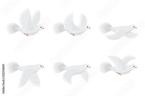 Valokuvatapetti Cartoon flying dove animation sprite isolated on white background