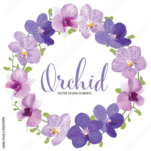 Floral frame with tropical orchid flowers on white background template. Vector set of blooming floral for holiday invitations, greeting card and fashion design.