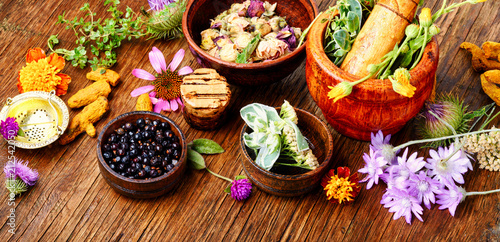 Healing herbs with mortar Canvas Print