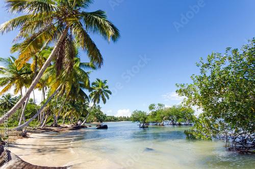 Montage in der Fensternische Karibik Ferien, Tourismus, Sommer, Sonne, Strand, Auszeit, Meer, Glück, Entspannung, Meditation, Palmen, Mangroven: Traumurlaub an einem einsamen, karibischen Strand :)