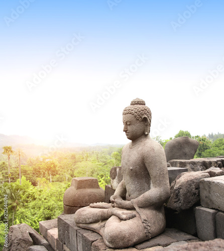 Tuinposter Asia land Statue of Buddha, Borobudur Buddhist Temple, Java Island, Indonesia