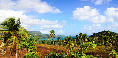 Foto op Aluminium Centraal-Amerika Landen Welcome to the Caribbean paradise: rest, relaxation, dreaming and enjoying a lonely beautiful beach :)