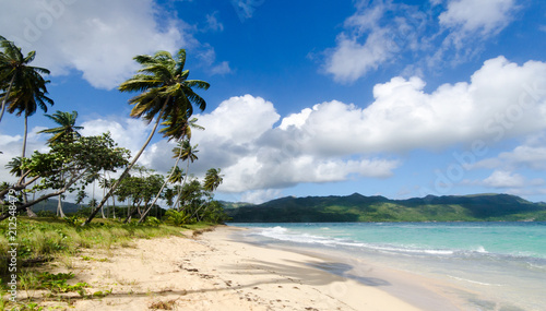 Spoed Foto op Canvas Caraïben Welcome to the Caribbean paradise: rest, relaxation, dreaming and enjoying a lonely beautiful beach :)
