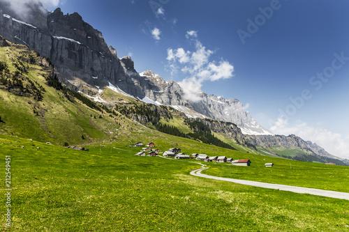 Staande foto Europa Schweizer Berge