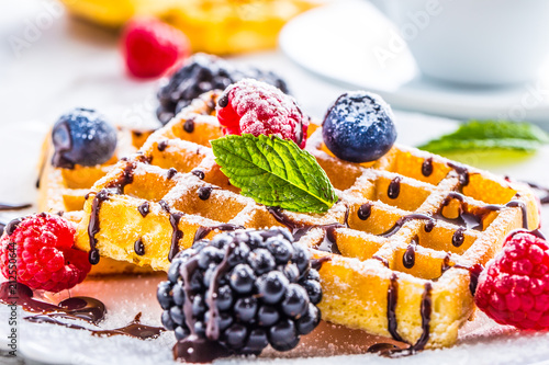 Fotografía  Fresh waffles with chocolate syrup berries sugar powder ant mint leaves