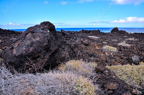 Spoed Foto op Canvas Lavendel Landscape in Tropical Volcanic Canary Islands Spain