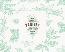 Hand Drawn Mint And Vanilla Vector Background Pattern. Abstract Spices Sketch Card Or Cover Template With Classy Retro Typography And Emblem.