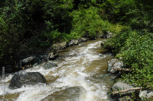 Foto auf Gartenposter Forest river Wild river with a lot of cascade in green rainforest. Beautiful river rapids in mountain