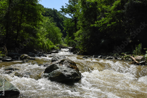 Foto op Aluminium Rivier Wild river with a lot of cascade in green rainforest. Beautiful river rapids in mountain