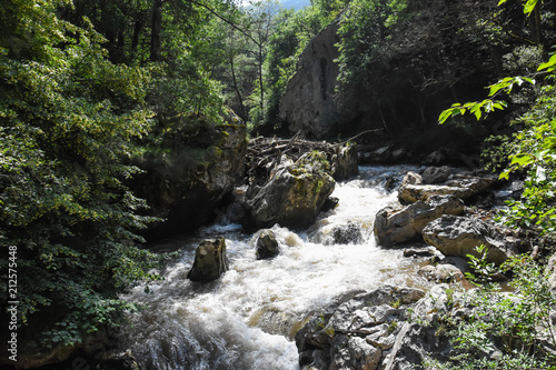 Wild river with a lot of cascade in green rainforest. Beautiful river rapids in mountain