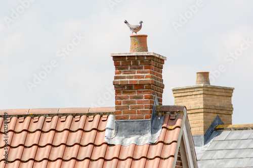 Chimney stack. Urban housing estate house roof tops with pigeon. Fototapet