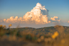Picturesque Cumulus Storm Cloud In The Sky. Sunset Colors. Nature Landscape Mountain Forest. Blurred Meadow Grass And Yellow Flowers In The Foreground. Place For Text