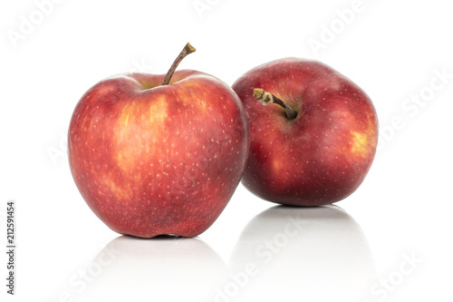 Fresh apples two red delicious isolated on white background. Canvas Print