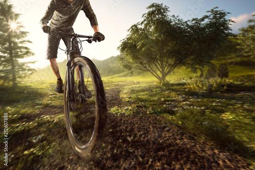 Deurstickers Wanddecoratie met eigen foto Mountainbiker im Gelände