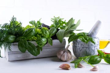 Fototapeta Przyprawy Fresh kitchen herbs and spices, oil with a white ceramic mortar. Basil dill salad sage arugulagarlic chili pepper