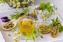 Alternative Medicine. Herbal Therapy.