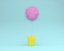 Creative Idea Layout Of Cactus Pink Floating With Flower Pot Yellow On Pastel Blue Background. Minimal Concept. The Freedom Idea.